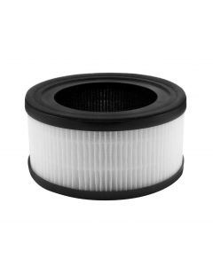 InvisiClean True Hepa / Activated Carbon Replacement Filter for IC-2010 - IC-2010-Filter